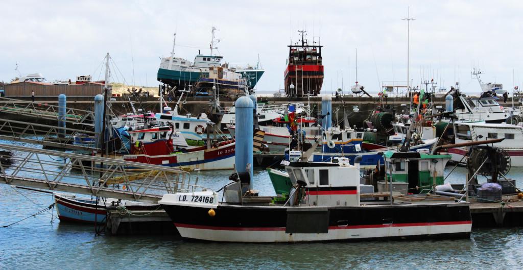 boats ile d oleron