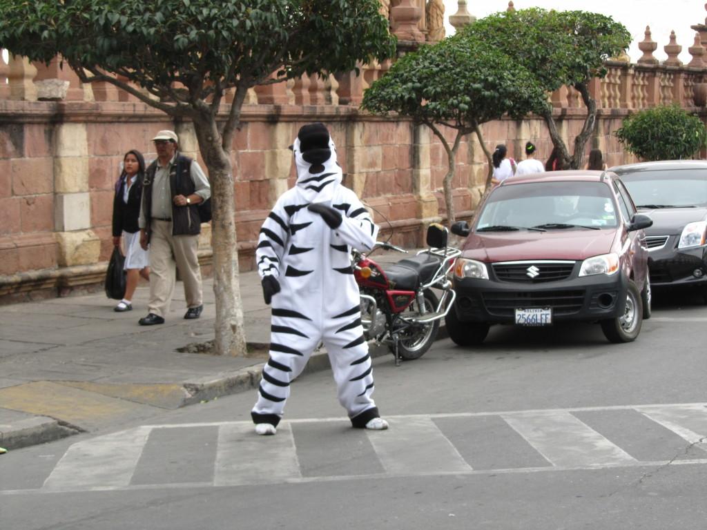 Zebras-Crossing-Sucre-Bolivia