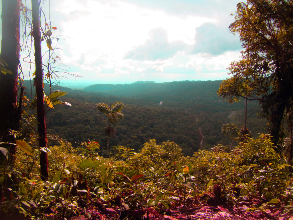mirador-viewpoint-of-the-amazon-ecaudor