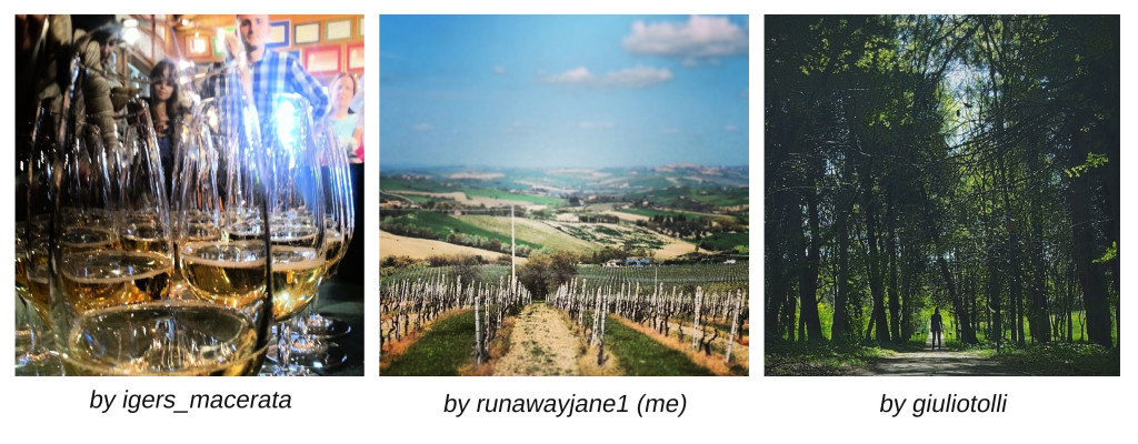 vinyards and wine tasting instagramers