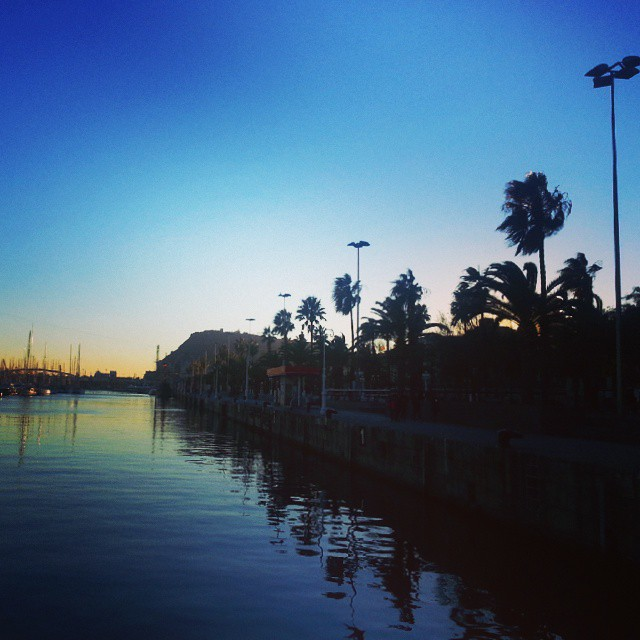 sunset palm trees barcelona by runaway jane
